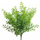 Buchbusch, height 28cm, green